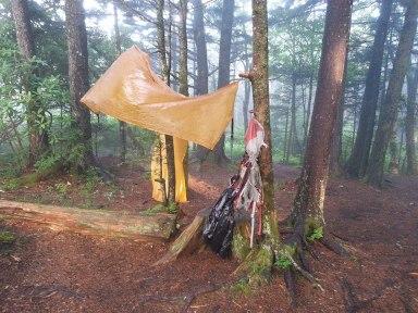 Sterling Mountain ~ Benton MacKaye Trail ~ Great Smoky Mountains National Park ~ North Carolina
