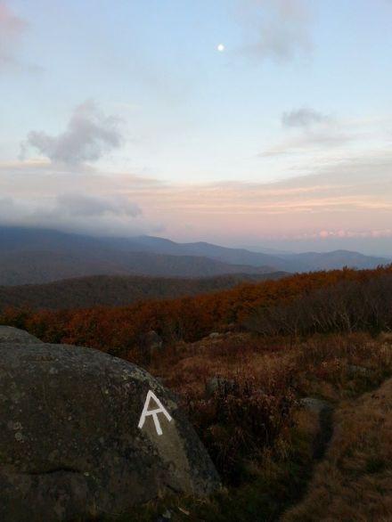 Jane Bald ~ Appalachian Trail