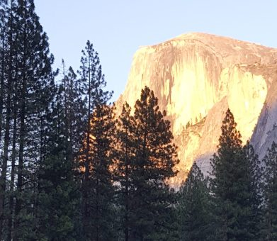 Half Dome from Yosemite Valley