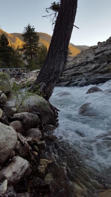 Piute Creek ~ 8,050' Kings Canyon National Park Monday, July 11th, 2016