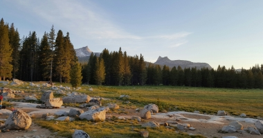 Cathedral Peaks from Tuolumne Meadows