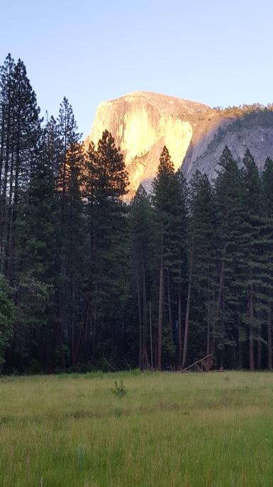 Half Dome ~ Yosemite Valley