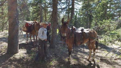 Mule Team Cathedral Lakes