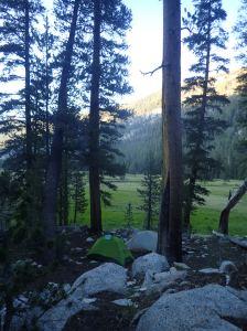 Lyell Canyon Sunday, July 3rd, 2016 Tent site