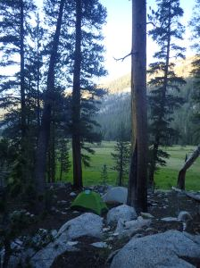 Lyell Canyon Sunday, July 3rd, 2016 Tent site