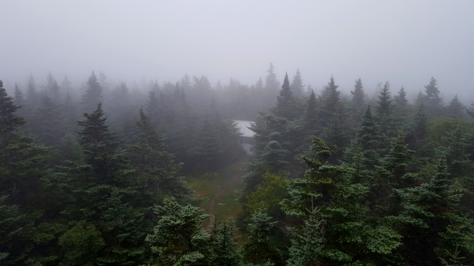 View of the caretakers cabin from the fire tower