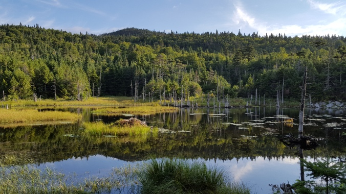 Lockwood Pond