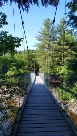 Clarendon Gorge...Mill River