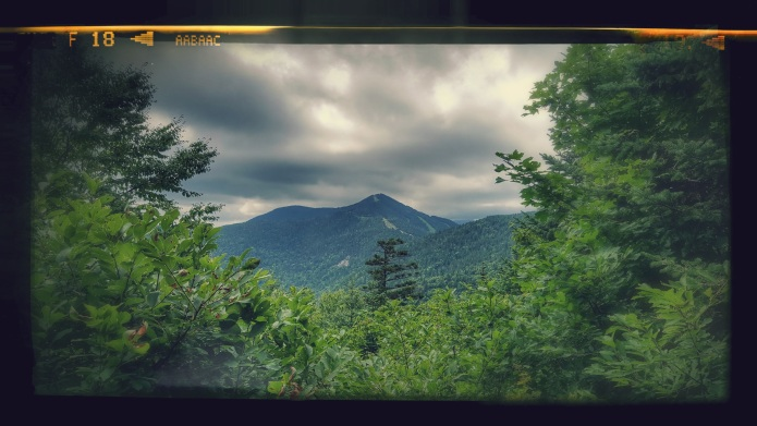 View in front of the Whiteface Shelter Looking across Beaver Meadow Basin at Madonna Peak