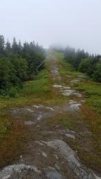 Approaching Madonna Peak 3,668'
