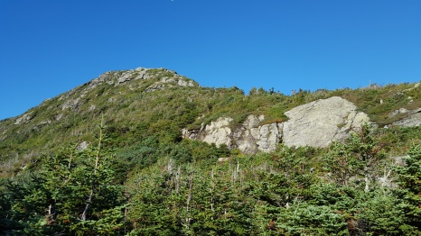 Looking up toward Mt Mansfield