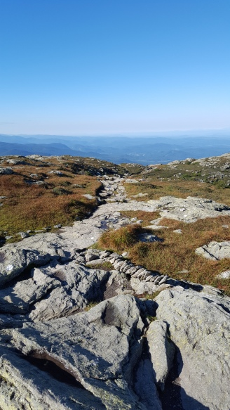 """View from """"The Chin"""" Mt Mansfield"""
