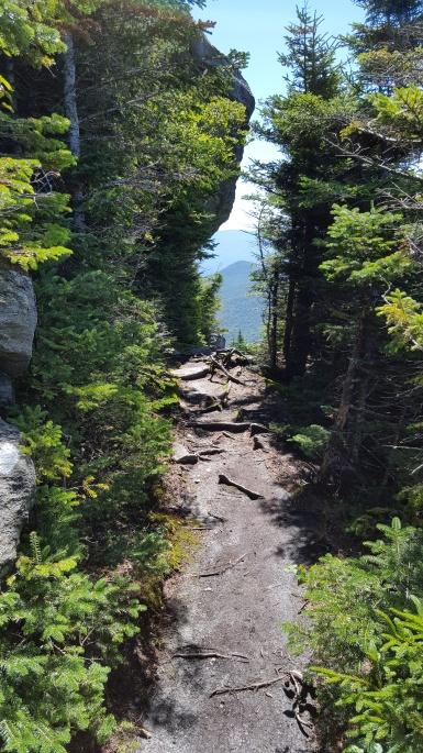 Loving the trail!