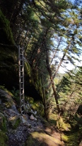Climbing up out of Ladder Ravine North of Birch Glen Shelter