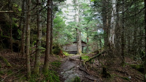 Hiking past the Theron Dean Shelter Built 1966 Renovated in 2009 Sleeps five