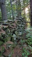 Stone fence Clarendon Shelter
