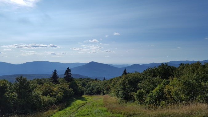 Views from ski trail/LT from summit of Bromley Mtn