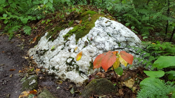 Vermont marble along the trail
