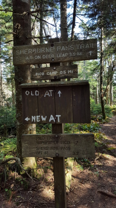 Jungle Junction/Sherburne Pass Trail signage
